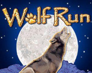 Wolf Run Pokie Game