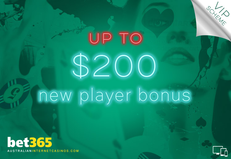 Bet 365 Casino and Sports